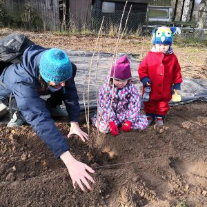 Pflanzung von Klimabäumen mit SaarLorLux