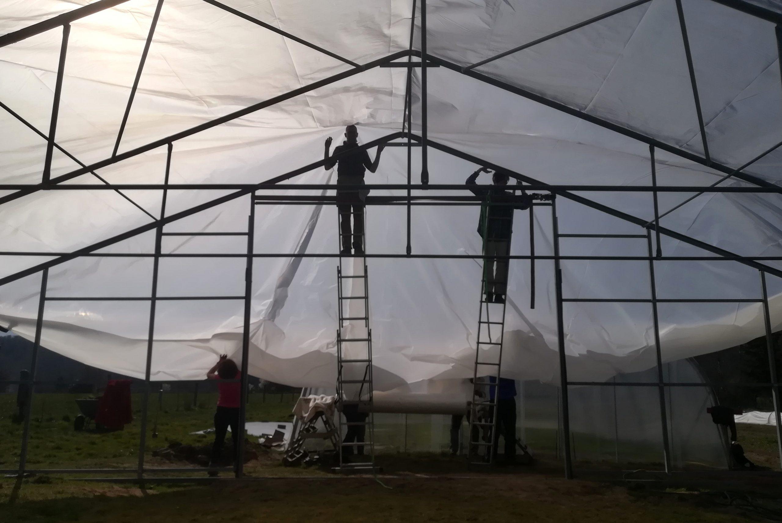 Helfer:innen unterstützen beim Bau des großen Gewächshauses - auf Leitern stehend ziehen sie die Doppelfolie über das Gerüst.